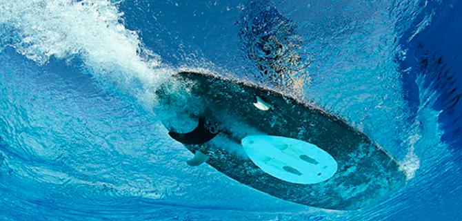 Le Wavejet Un Surf Moteur Electrique
