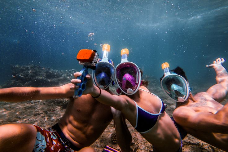 plongée sous marine à Maui entre amis