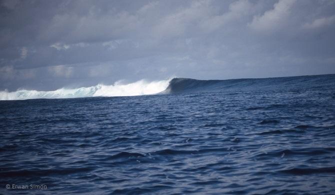 Le spot de Pointe Requin est situé au Sud de l'archipel et capte toutes les houles. C'est un spot puissant et dangereux avec du courant et beaucoup de squales dans les environs.