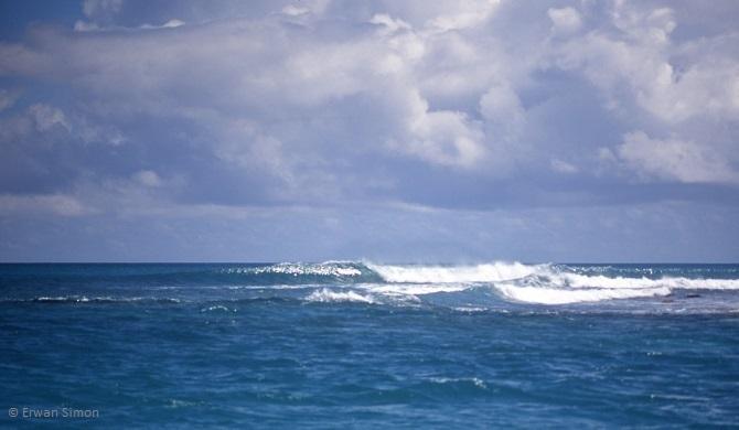 Erwan a surfé 4 spots de surf différents sous l